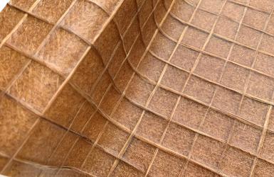 Bambooder